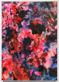 Maya Rochat_Language of color