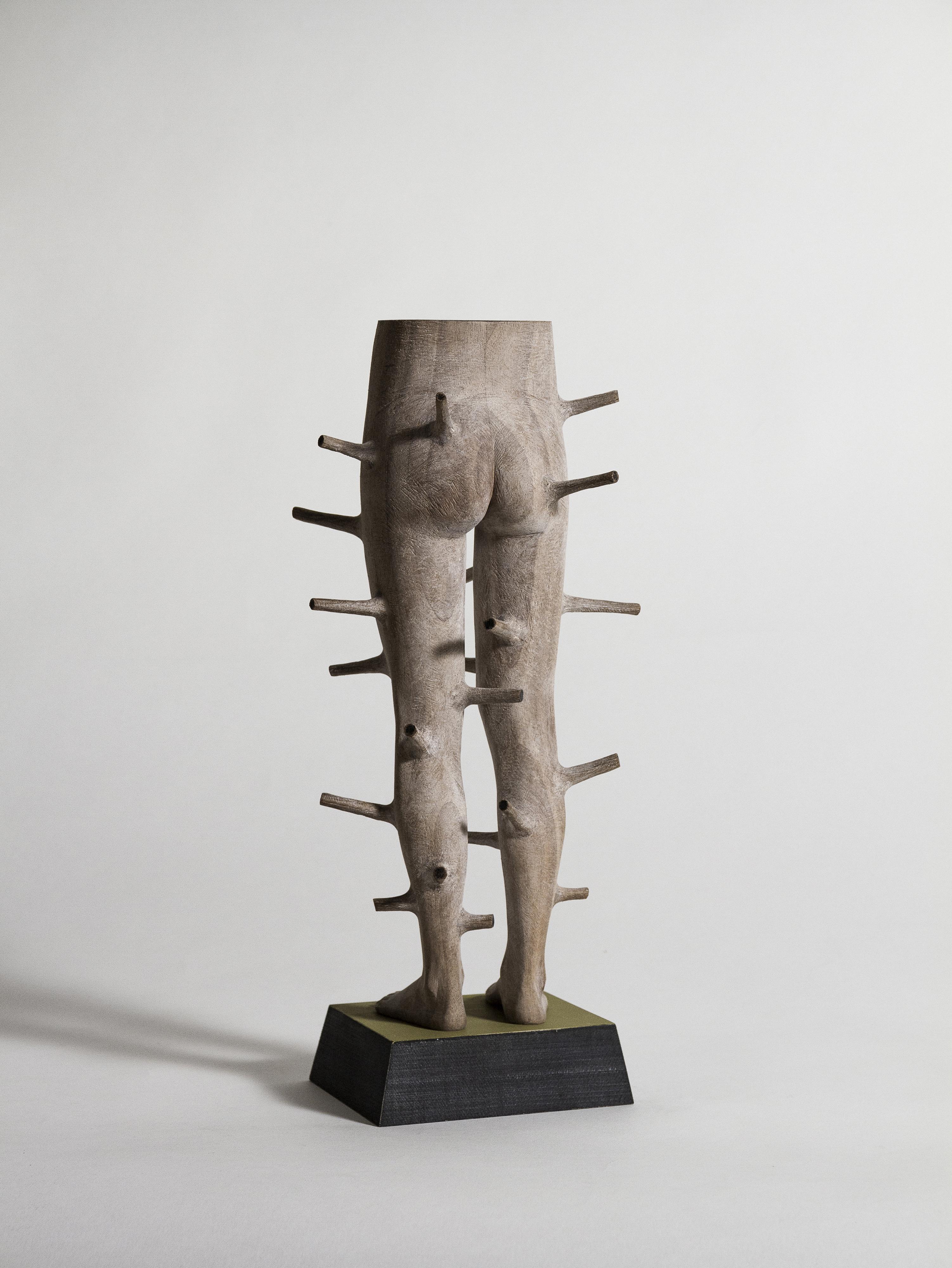 andreas_senoner_regrowth_legs
