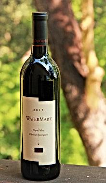 WaterMark%202017%20IMG_1990%20(2)_edited