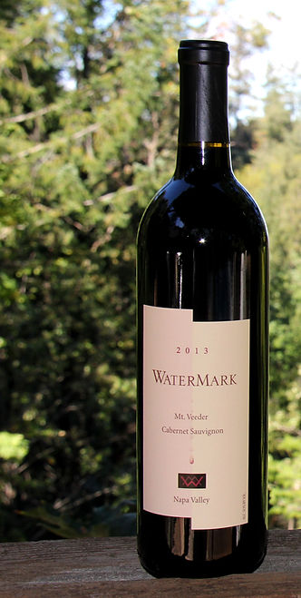 2013 WaterMark Wine Cabernet 93pts