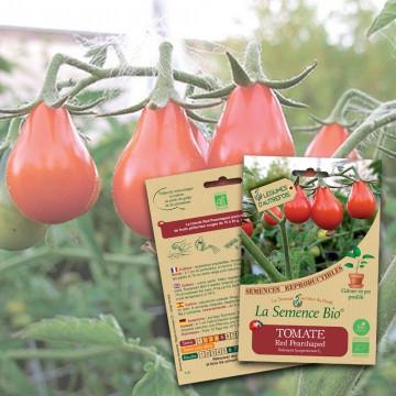 semences-bio-reproductibles-tomate-red-p