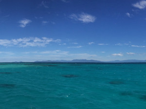 Visit the Great Barrier Reef