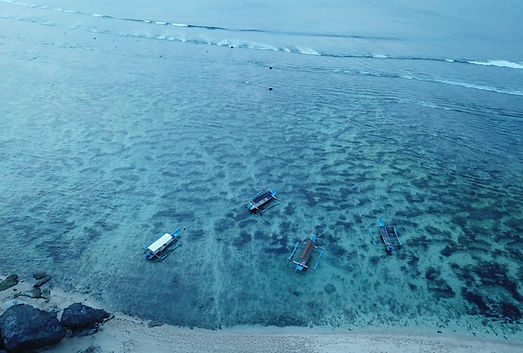 Padang Padang Beach Aerial Image Uluwatu Bali Indonesia Ono Vita