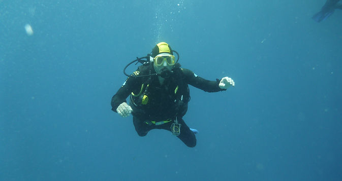 Agincourt Reef Scuba Diving. Visit the Great Barrier Reef