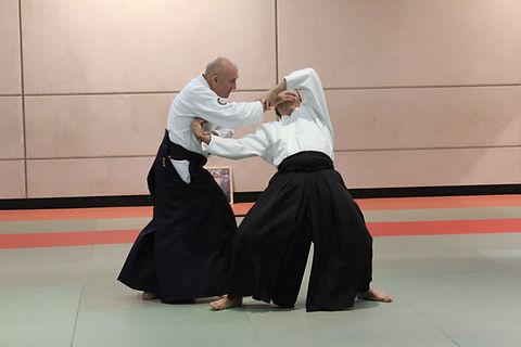 Dojo Traditionnel Club Association Aïkido Paris Vincennes Fort Neuf Christian Teissèdre Irimi