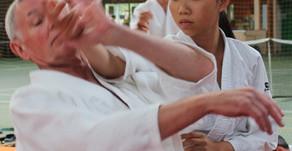 12ème édition de la semaine internationale bretonne d'Aïkido traditionnel dirigée par Alain Peyr