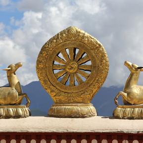 golden-dharma-wheel-153837012-a725e73142