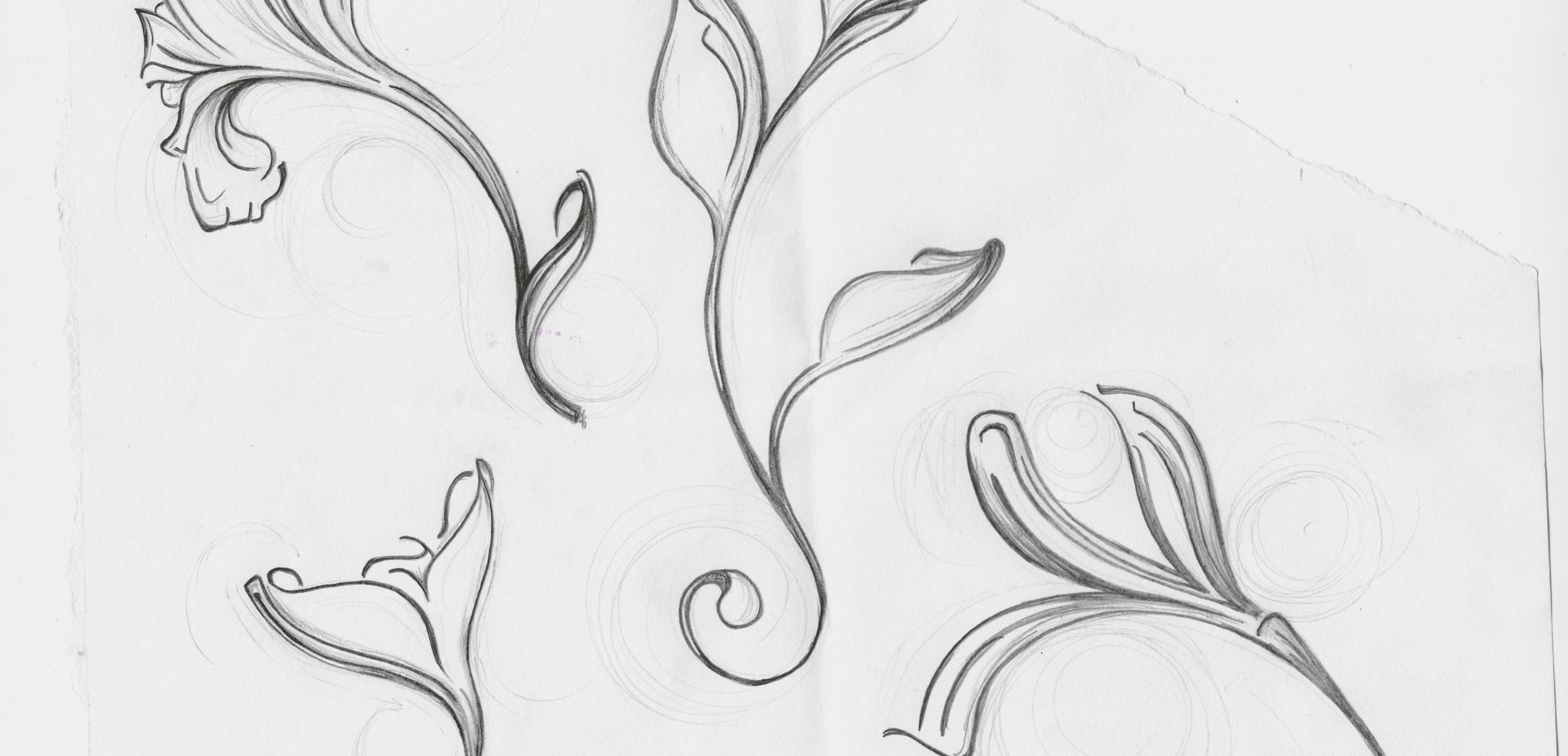 Abstract Botanicals