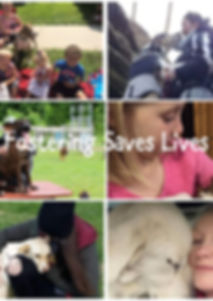 Fostering saves lives.jpeg