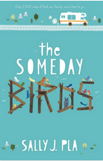 someday-birds.png