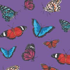 Butterflies fly away