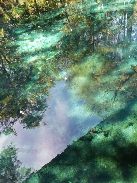 5D Healing Meditation in Nature by Yana Kalai