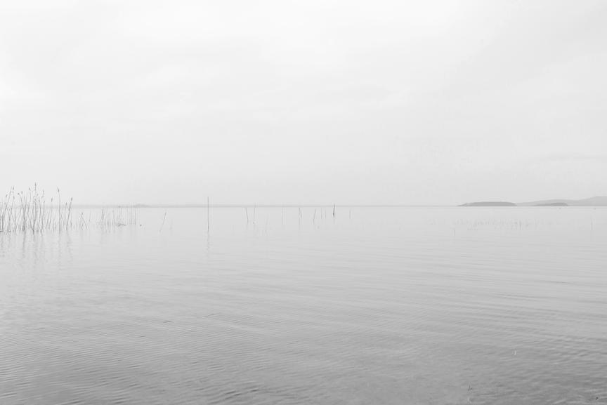 Trasimeno - dall'Acqua alla Terra - 2015