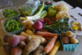 pennyroyal cafe saugautuck csa program.j