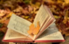 book-3755514__340.jpg