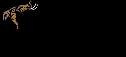 Bronze Horizontal logo.png