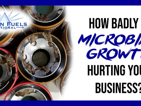 How Badly Is Microbial Growth Hurting Your Business?