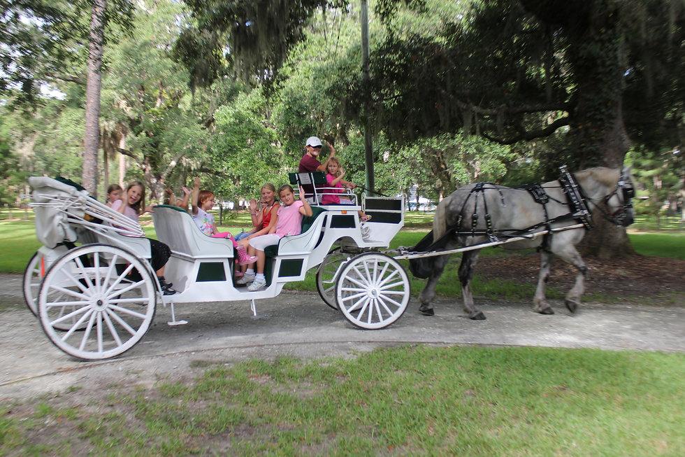 carriage%20tours.jpg