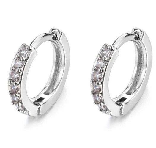 Crystal Sleeper Earrings