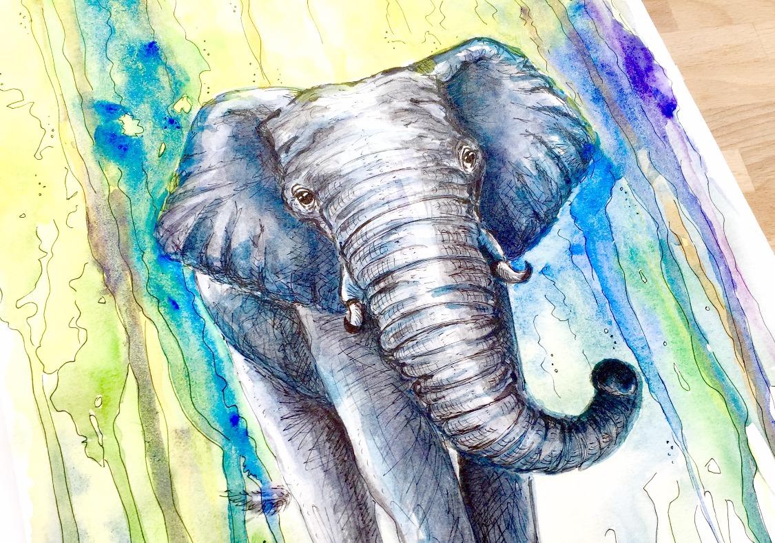 elefant_edited