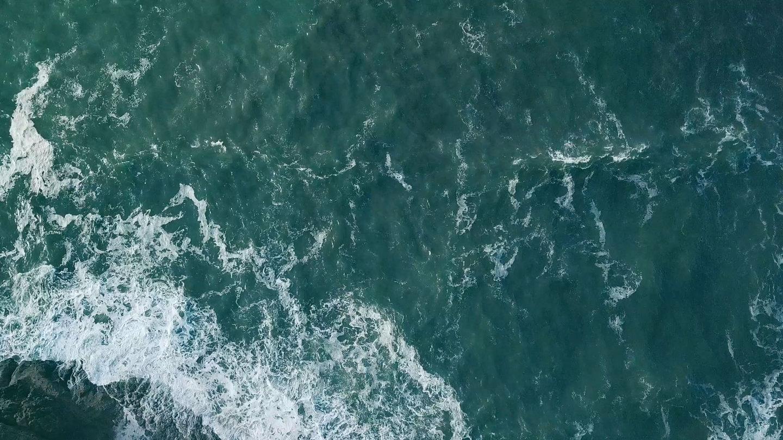 freebag_ocean-01.jpg