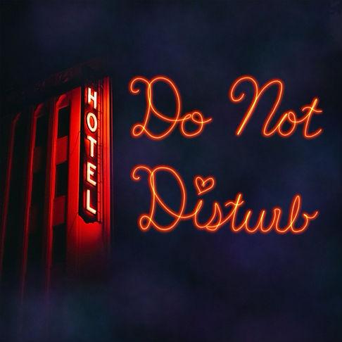 Do-Not-Disturb-insta.jpeg
