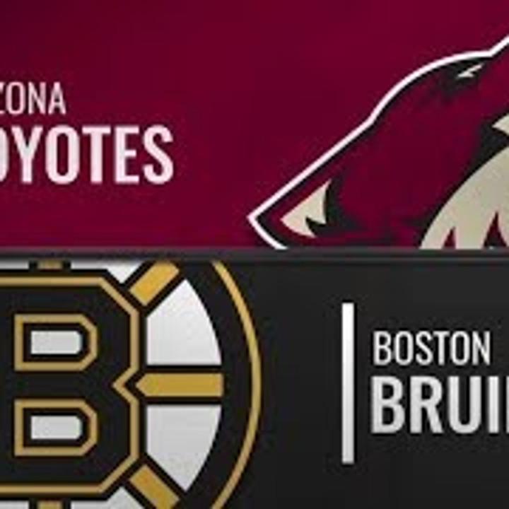 Packages For Hope: Coyotes v. Boston Bruins