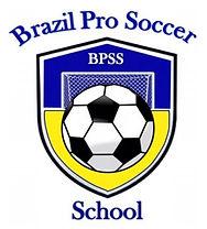 logo BPSS.jpg