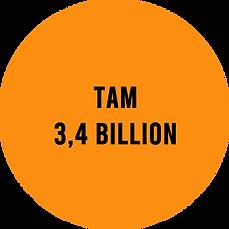 TAM  V2.png