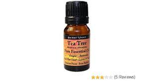 Tea Tree - Essential Oil 10 ml