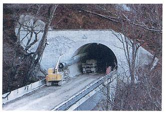 石楠花トンネル.jpg