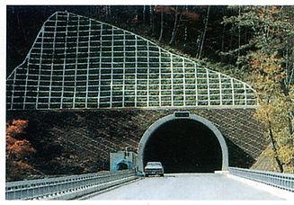 きびたきトンネル.jpg