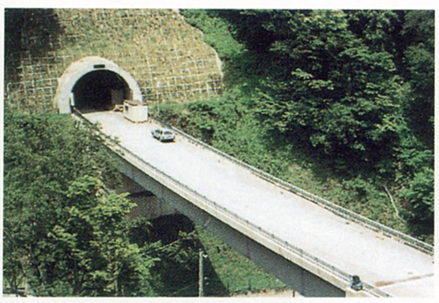 縞石トンネル.jpg