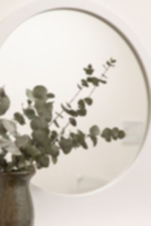 eucalyptus photo.JPG
