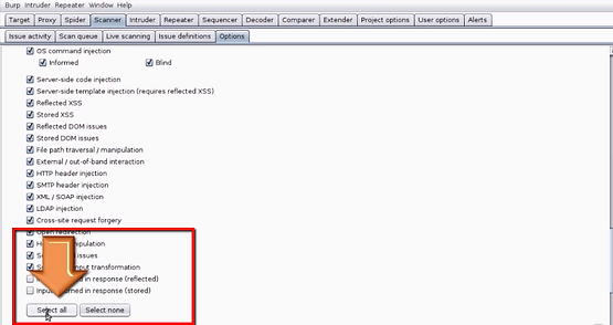 Web Hacking Approach using Burp Suite