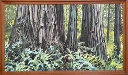 "Jarvela-Cal Barrell 2 (Prairie Creek State Park) _acrylic on panel, 33 1_2 x 55 1_2"" framed"