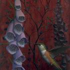 Allens Hummingbird & Foxglove