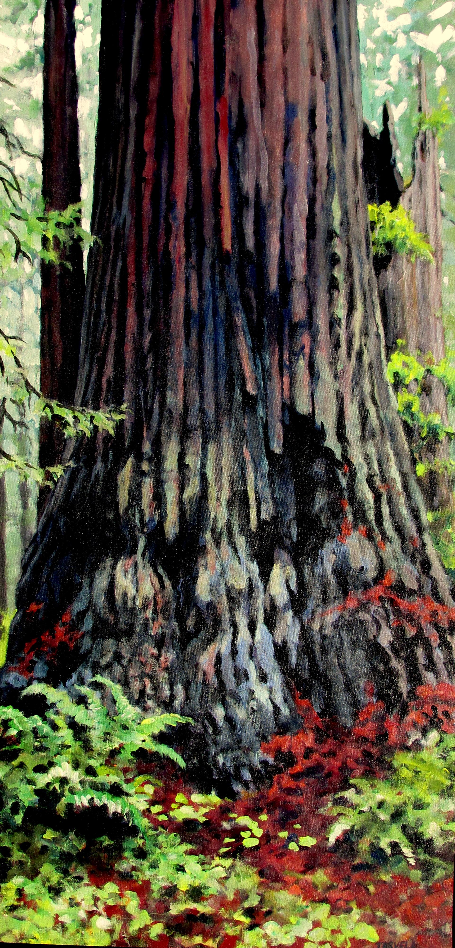 Jarvela-Large Redwood I