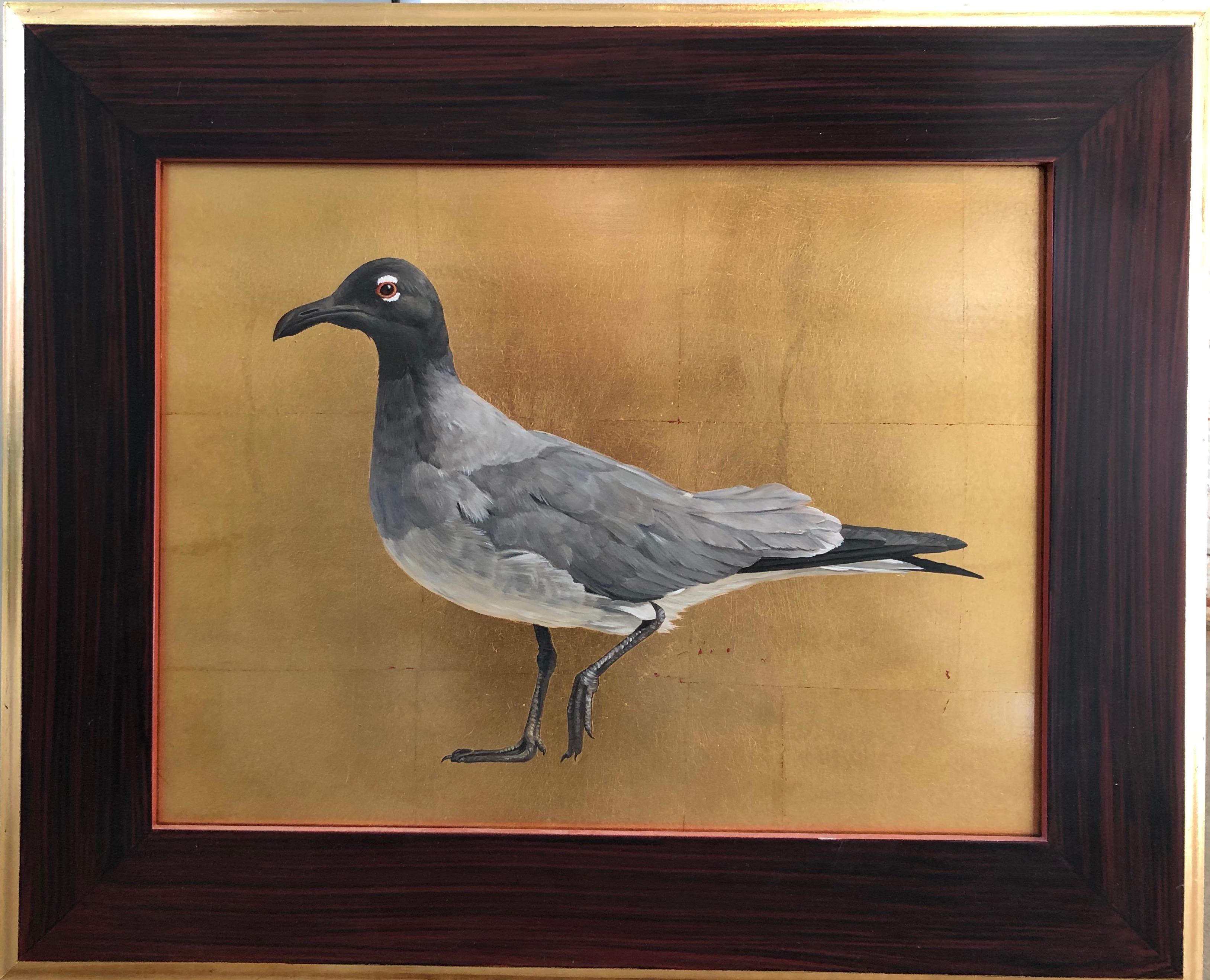 Von Grone-Lava Gull