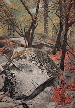 Rocks In Yosemite