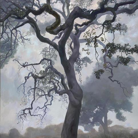 Adam Wolpert-Spirit Oak.jpg