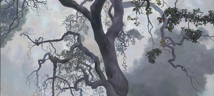 Adam Wolpert- Spirit Oak