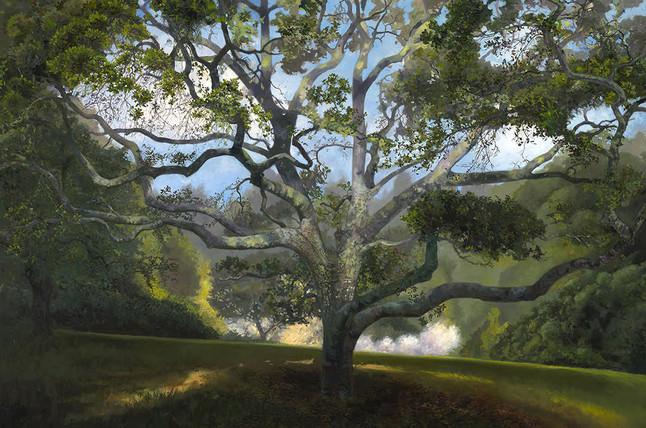 Wolpert-Blooming Apples, 48 x 72_ $18,000.jpg