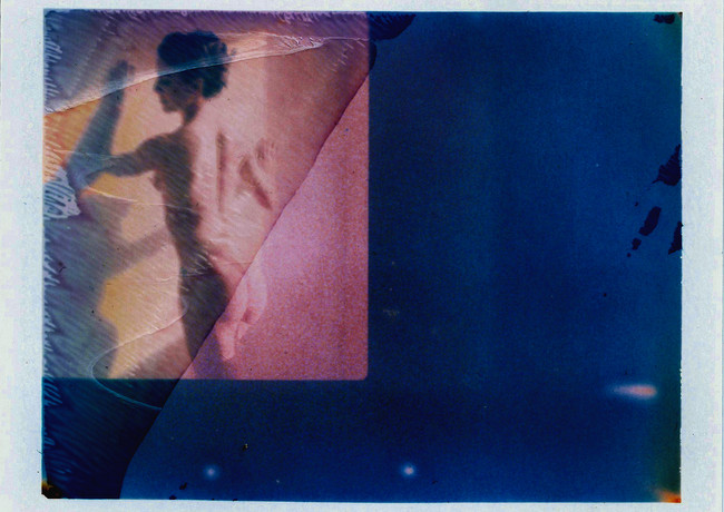 Honorable Mention in Nude | Last Polaroids