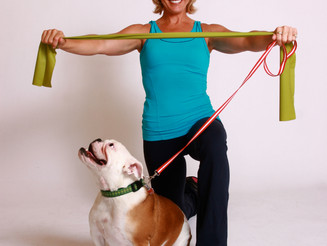 Get Your Dog & Let's Workout