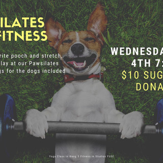 pawsilates dog fit classes