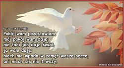Ew Jana 14 27 (NBG)