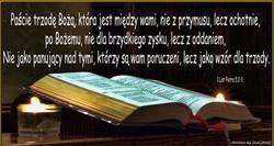 1 List Piotra 5 2 3