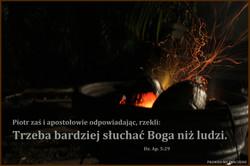 Dz Ap 5: 29