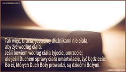 LIST DO RZYMIAN 8 12 13